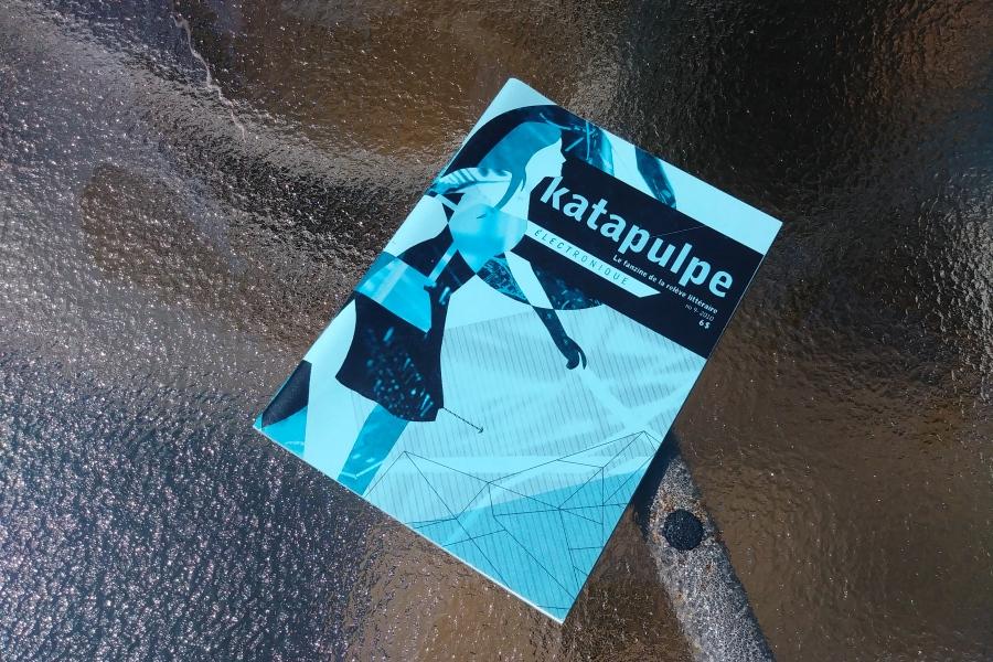 Katapulpe, « électronique », no 9, 2010.